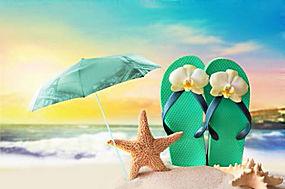 海星和伞图片