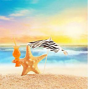 沙滩海星图片