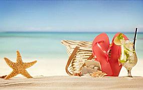 海星沙滩图片