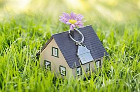 草地上的房屋