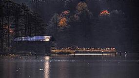 景观,湖,森林,秋季,树木,太阳光线,水,阳光,舱,野花,薄雾263056