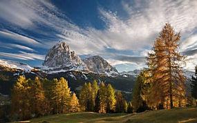 景观,秋季,山,森林,草,日落,雪峰,云,树木,阿尔卑斯山,意大利,天