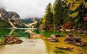 景观,湖,山,森林,灰蒙蒙,秋季,树木,阿尔卑斯山347636