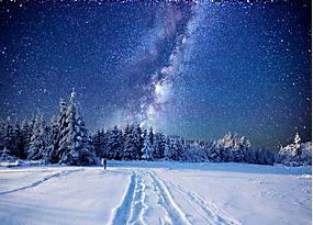 景观,晚,冬季,雪,星夜,天空,森林,北欧风景326350