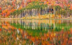 景观,山,森林,湖,奥地利,树木,华美,秋季,水,反射275582