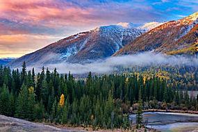景观,山,森林,秋季,河,薄雾,雪,树木,云,中国315579
