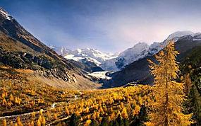 景观,山,森林,秋季,雪峰,谷,黄色,树木,阳光,早上333422