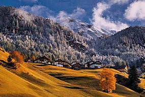 景观,山,森林,雪峰,秋季,村,干草,早上,阳光,树木,阿尔卑斯山,意