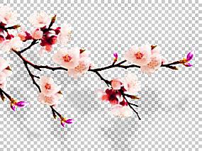 中国清明婚礼幸福,梅花PNG剪贴画文化,科,电脑壁纸,树枝,双喜,花,图片