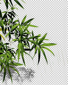中国竹子中秋节清明节,竹PNG剪贴画叶,枝,竹叶,草,植物茎,竹叶,封图片